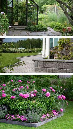Katso vinkit ja ohjeet ensi kesän istutusten sekä pihan suunnitteluun. Arch, Outdoors, Outdoor Structures, Garden, Plants, Longbow, Garten, Lawn And Garden, Gardens