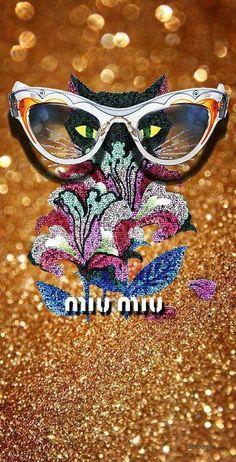13 Best Miu Miu sunglasses images  fde6670b7c52c