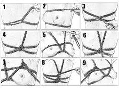 Image result for shibari