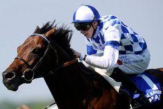 Al Kazeem and Toronado Set For Fascinating International Stakes Clash