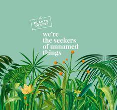 """Popatrz na mój projekt w @Behance: """"The Plants Hunter"""" https://www.behance.net/gallery/60826169/The-Plants-Hunter"""
