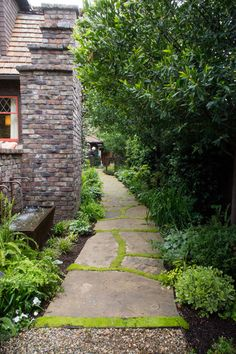 a meandering pathway leads to the more secluded backyard. Interplanted with Irish moss (Sagina subulata), the flagstone paving introduces another level of hierarchy in floor materials