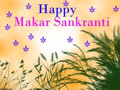 Wishing you a all a very Happy Makara Sankranti! May we all have a green and prosperous year ahead.