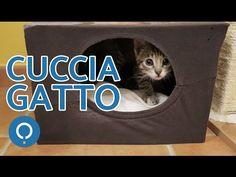Cuccia gatto fai da te - Attività manuali per gatti - YouTube