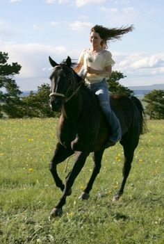 Black horses who helped play the role of Flicka in the 2006 film included Docs Keepin Charge, and Pablo, who acted as a steady mount for the actress. Photo credit to Stephen Vaughan, copyright 2006 Twentieth Century Fox Film Corporation. Bareback Riding, Horse Riding, Black Horses, Wild Horses, Horse Girl, Horse Love, Alison Lohman, Wyoming, Horse Quotes