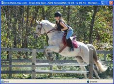 ADOPTED!!—A Home For Every Horse Featured Rescue of the Week: Behind every great rider is a wonderful professor. Phineas has been there, done that and is ready to teach a younger rider or small adult the ropes. This 20-years-young gray Arabian gelding certainly doesn't look his age, and his rescue describes him as sweet, quiet and gentle. He is located in Colesville, New Jersey, and his adoption fee is $500. Do you have room in your barn and heart for this beautiful boy?
