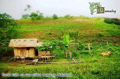 Rural life at San Isidro Damulog, Bukidnon Hut House, Bamboo House, Mindanao, Slice Of Life, More Fun, Countryside, Apartments, Philippines, Travel Guide