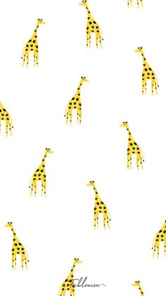 Wallpaper iphone cute backgrounds pattern prints Ideas for 2019 Summer Backgrounds, Cute Wallpaper Backgrounds, Animal Wallpaper, Pretty Wallpapers, Iphone Backgrounds, Iphone Wallpapers, Cute Patterns Wallpaper, Trendy Wallpaper, Cool Wallpaper