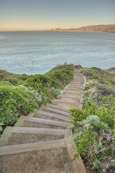 Running along San Francisco's Battery to Bluffs trail
