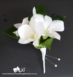 Wedding boutonniere.  White Singapore orchids and salal leaf from Blossom Wedding Flowers