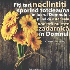 Bless The Lord, Jesus Loves You, God Jesus, Bible Verses, Religion, Blessed, Love You, Faith, Romania