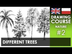 5 tips to draw trees effectively - YouTube