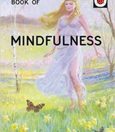 The Ladybird Book Of Mindfulness PDF