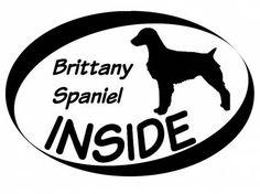 Hund Inside Auto AufkleberInside Aufkleber: Brittany Spaniel
