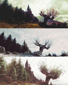 The Whomping Willow