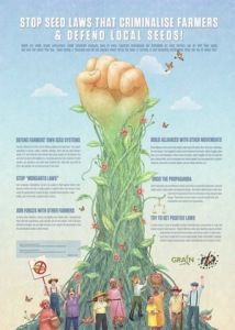 Grain byLa Via Campesina Click here to downloadfull-size poster Seeds are under attack everywhere. Under corporate pressure, laws in many countries incre