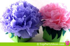 Large Paper Tissue Flower Centerpiece - glue the flower to the box