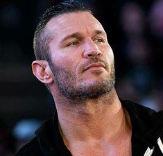 Wwe Couples, Randal, Cm Punk, Daniel Bryan, Randy Orton, Triple H, Total Divas, Cycling Art, Seth Rollins