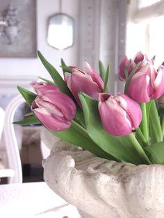 Tulips ettrottmonogram.blogspot.se