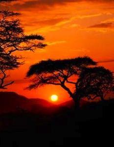 Ethiopian sunset...