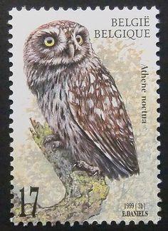 Bélgica 1999-Búho Común