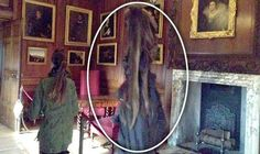 HAMPTON COURT'S GREY LADY! Is this the specter of a servant of King Henry VIII's? The Grey Lady, was Dame Sybil Penn, and a nurse to Prince Edward. She died from small pox in 1562. But why would she still haunt the palace? For more: http://www.express.co.uk/news/weird/560319/Grey-Lady-ghost-captured-schoolgirls-Hampton-Court