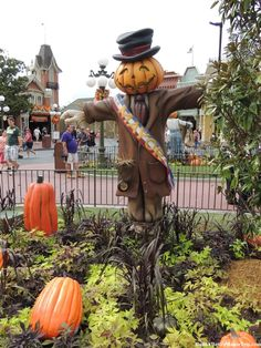 fall decorations in the magic kingdom tips info about mickeys not so scary halloween