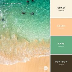 Color Combination: Archipelago. Try this combination in your next design! #FAF1DF #FFCA97 #64AE82 #413923 #design #style #create #combination #palette #soleil #coast #cape #pontoon #sea #archipelago #graphic #inspiration