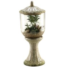 Bring the outdoor elements to your home decor with this lovely stripped agave and aloe in hurrcane glass vase . Measuring 23.5 inches high, this decorative plant is allergy and maintenaince free and makes a perfect everyday accent.