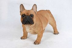 Dog  French BullDog  Large Statue >>> Learn more by visiting the image link.