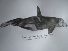 The Iliamna LakeMonster