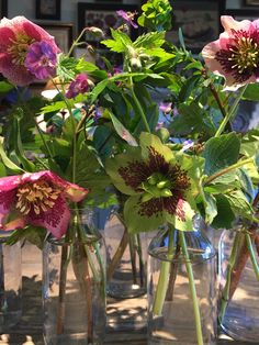 BUTTER WAKEFIELD creates a stunning Easter table with various flowers from her garden including her favourite speckled hellebores, early flowering geranium phaeum, and euphorbia robbiae