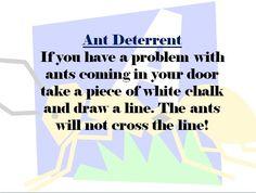Ant Deterrent