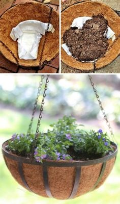 This gardening hack is GENIUS! Use diapers to retain moisture in potted plants. Gardening Hacks and Tips for the Wannabe Gardener. Turn that black thumb into a green thumb with these simple, useful tips. Change the way you garden forever! Hanging Flower Baskets, Hanging Planters, Hanging Plants Outdoor, Garden Web, Garden Plants, Potted Plants, Balcony Garden, Edible Plants, Container Plants