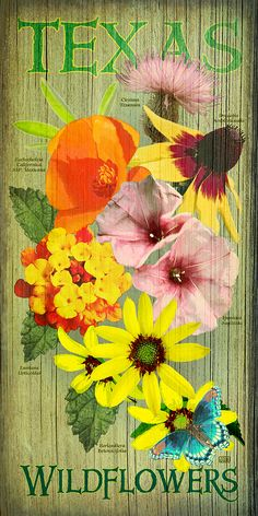 New Wildflower poster from Texas Poster in anticipation of Spring's arrival.