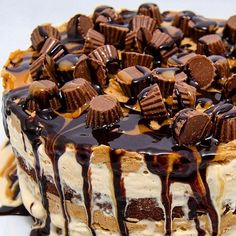 - Chocolate Peanut Butter and Brownie Ice Cream Cake with Chocolate Fudge and Caramel Sauces on Top! - TAG a Cake Lover!