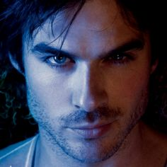Damon Salvatore. The ohhh so bad, but still soooo good brother.