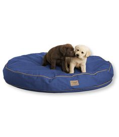 175ac0d1475 The bed, not the pups, for our existing dog. $99 Large Dog Breeds