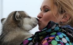 Woman sharing tender moment with her pet during an international dog sled race in Minsk.  2/22/14