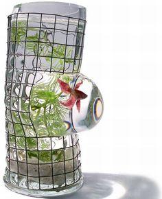 Decorative fish tanks