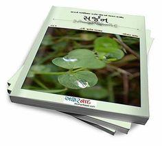 """સર્વત્ર """"સર્જન """" જ """" સર્જન """"  Launching on 15th August 2016 . First Gujarati Microfiction  Magazine """"Sarjan""""."""