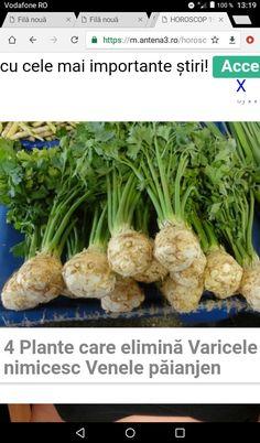 Remedies, Health Fitness, Healthy Recipes, Vegetables, Foods, Medicine, Diet, Varicose Veins, Plant