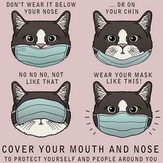 Mask Quotes, Mask Drawing, Cat Face Mask, Face Masks, Cat Memes, Cat Puns, Cool Cats, Cancer, Kids Rugs