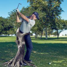 Trail Leg - Tree trunk