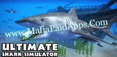 Ultimate Shark Simulator v1.1 APK   Dive into the deep blue sea and rule over the ocean as a real Shark! For the first time ever choose from SEVEN PLAYABLE SHARKS! Hunt down food in the coral reefs raise a family of sharks and swim through the seaweed forests stalking prey like squid turtle dolphin and whales! Download the Ultimate Shark Simulator today while it's 50% OFF for a very limited time!  Brand New Features REALISTIC SIMULATOR You'll need to maintain your health hunger oxygen and…