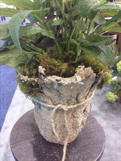 Light weight hypertufa. Dip burlap in hypertufa mix, shape over upside down pot, then let it harden.
