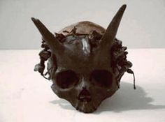 Humans With Horns Myth or Reality? Truth is Stranger Than Fiction.