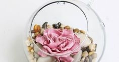 Inspiration: This flower is associated with rich meaning, so its presence or giving a gesture of great symbolic value.