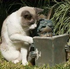 Come'on, turn the page already!