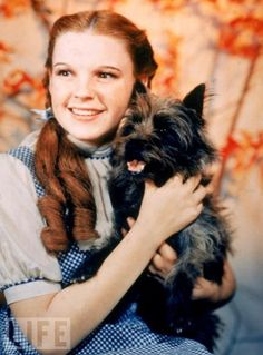 Ahhhh, Dorothy and Toto.... She is so beautiful :D